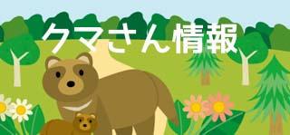 クマさん情報です。